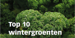 Top 10 wintergroenten