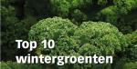 Top 10 wintergroenten