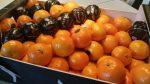Top 10 herfstfruit